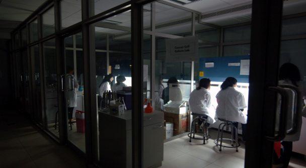 MSc Molecular Biology and Human Genetics | Master of Science